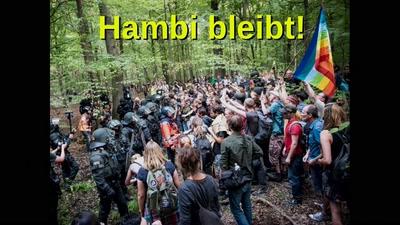 Hambacher Forst #hambibleibt