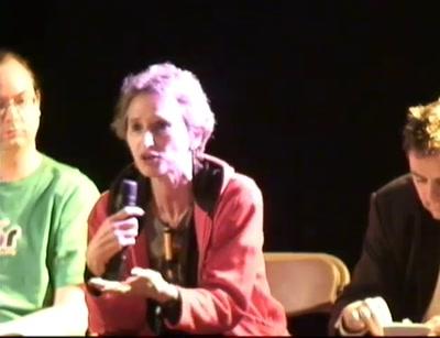 Wikileaks panel