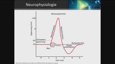 Neuroprothetik