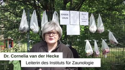 """Videoclips gegen Videoüberwachung 6. Türchen """"Zäune"""""""
