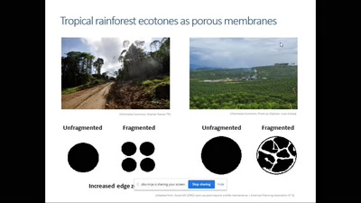 Planetary Health: approaches to zoonotic spillover, indigenous health, and rainforest conservation